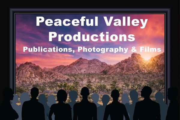 PV Productions